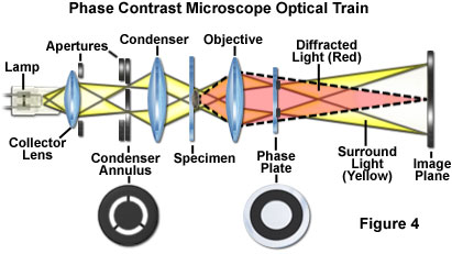 Bw optics annulus illustrated in figure 1 and figure 4 is typically constructed as an opaque flat black light absorbing plate with a transparent annular ring ccuart Gallery